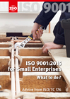 ISO 9001:2015 For Small Enterprises: What to Do (E-Book)