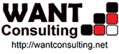 Want Consulting